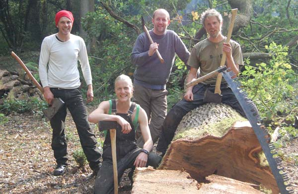 felling a tree with an axe